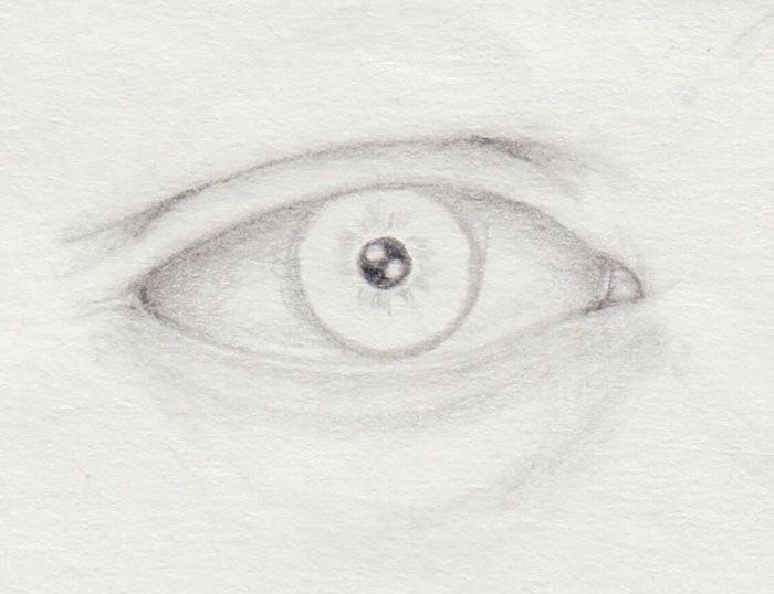 Iris natürlich zeichnen