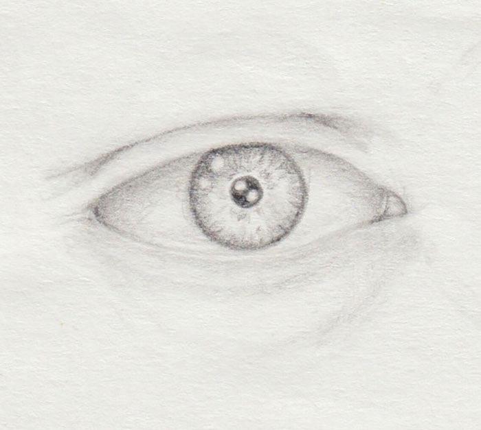 helle Iris natürlich zeichnen