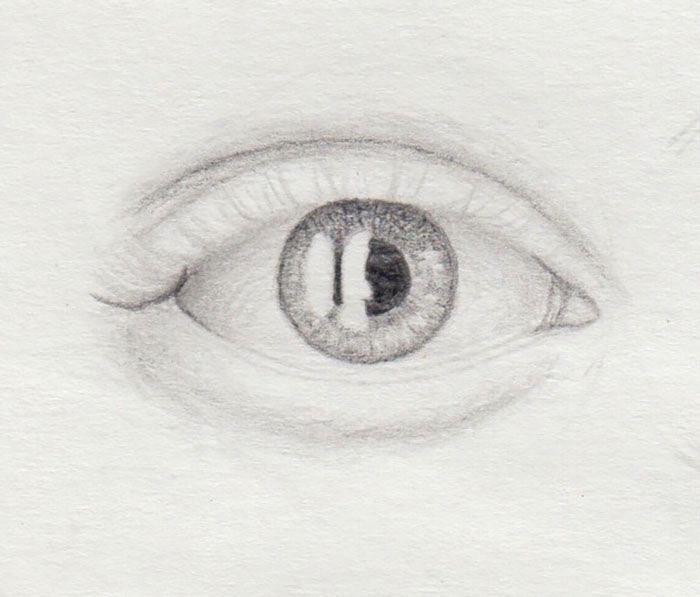 volle Wimpern zeichnen