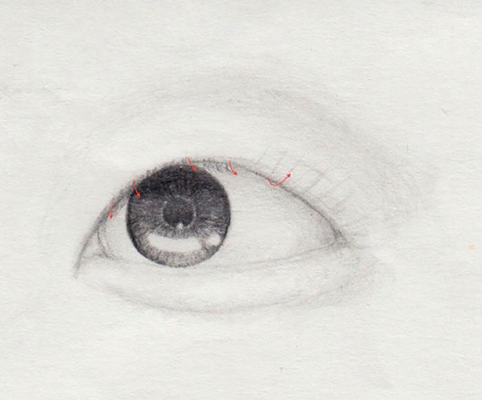 gerade Wimpern zeichnen