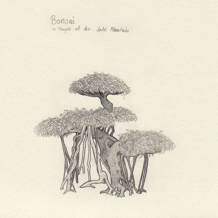 Sketch bonsai in Hanoi
