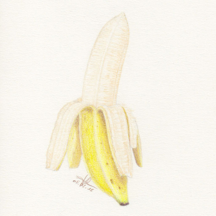 Inspiration for drawing in everyday life - Banana