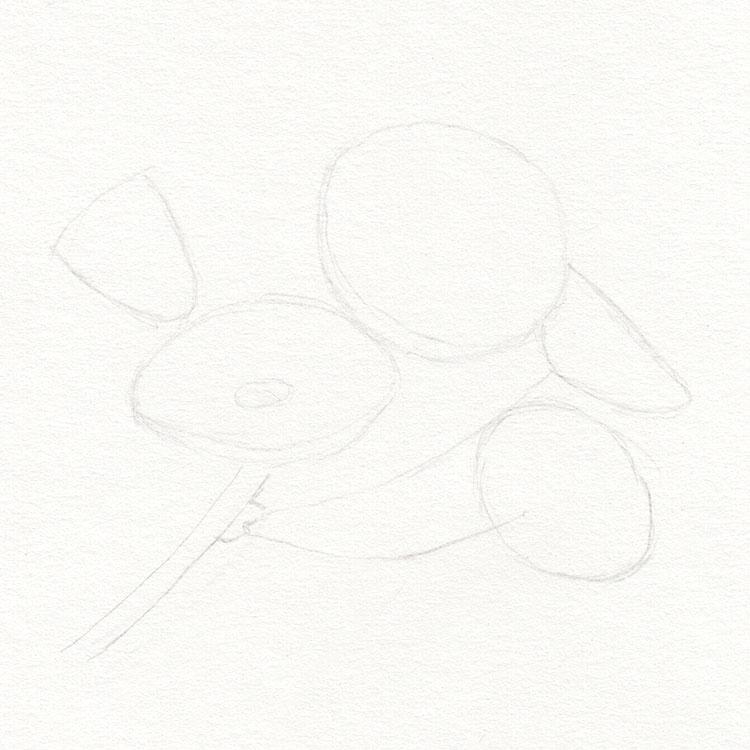 Цветки сакуры рисуют базовую форму