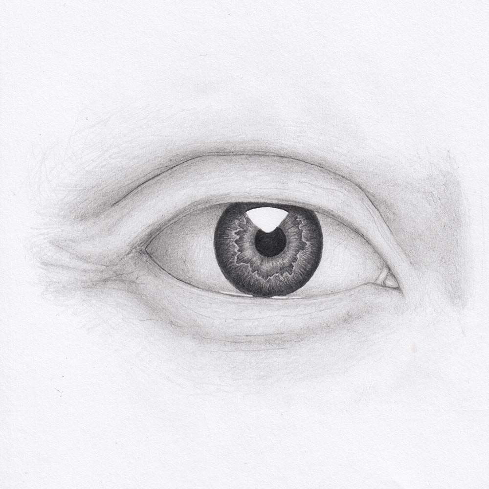 Draw eye from front - iris