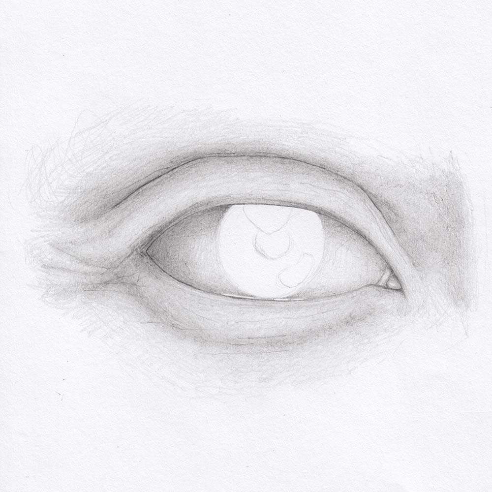 Draw eye from front - upper eyelid