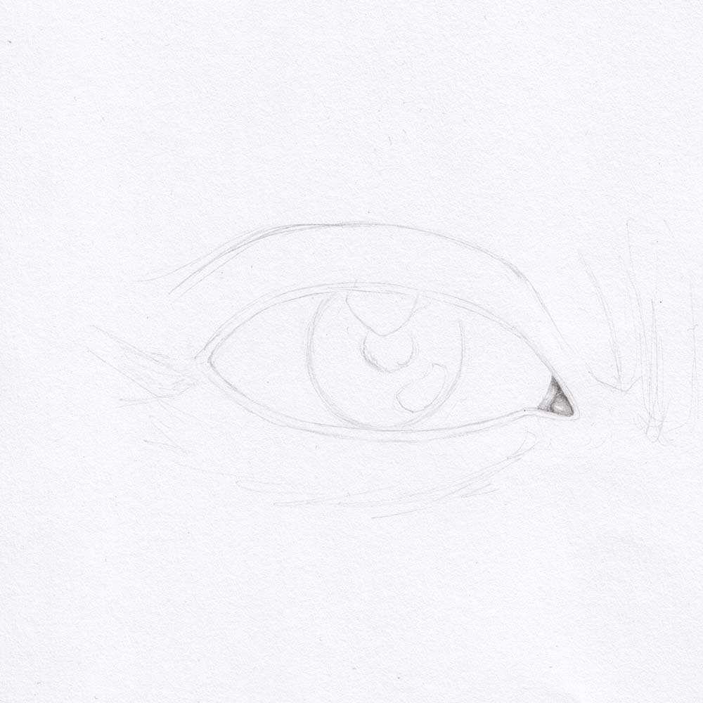 Draw the eye from the front - lacrimal caruncle