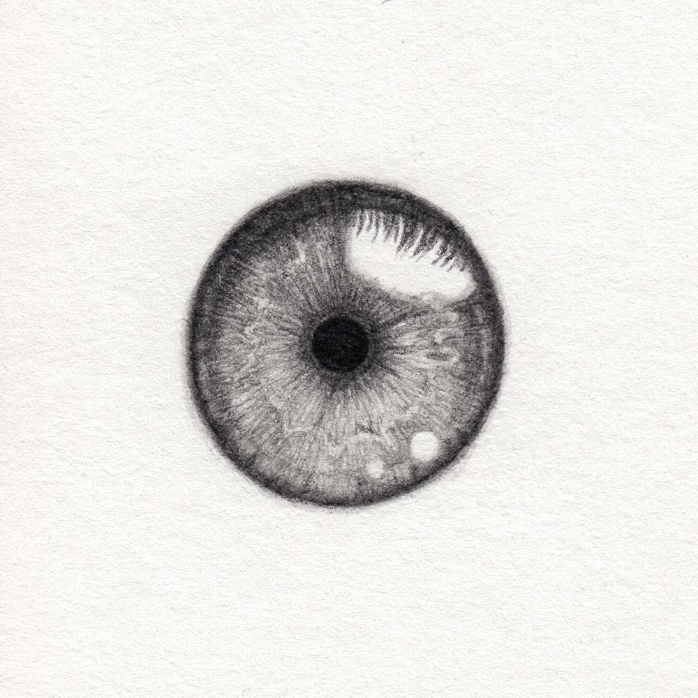 Iris zeichnen realistisch