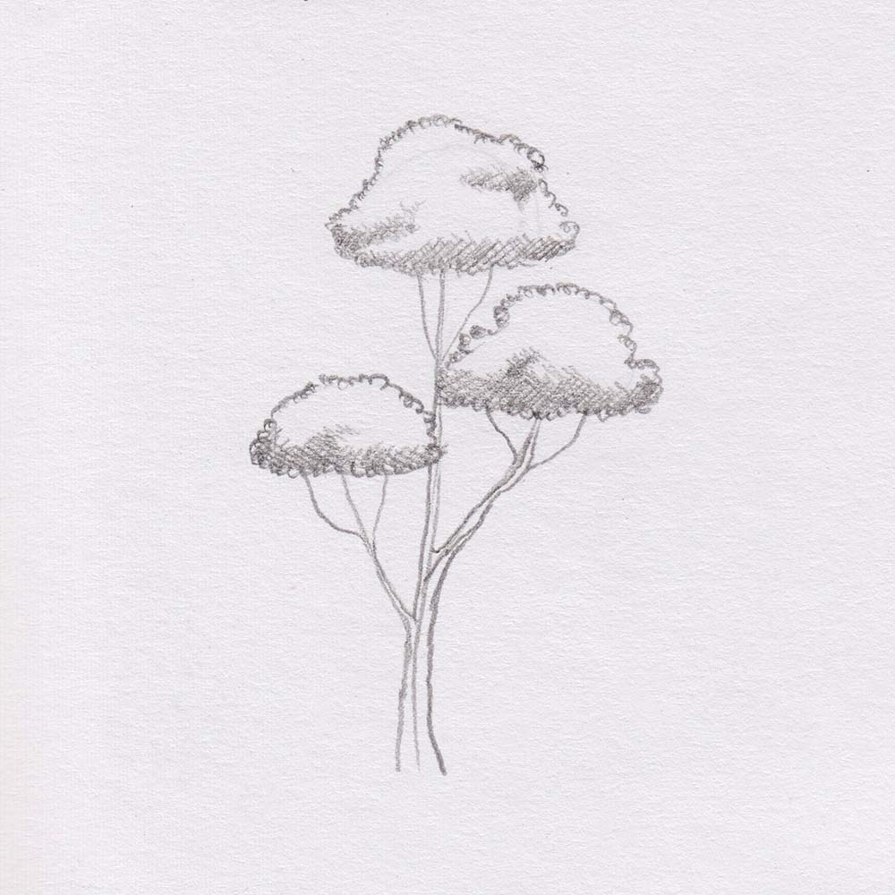 Skizze Baum