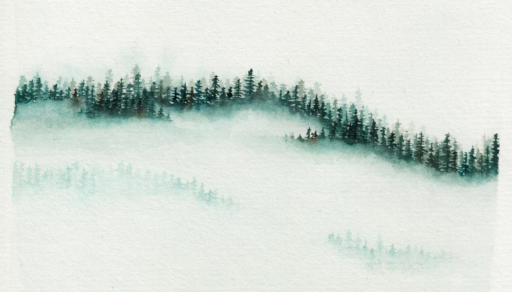Paint a foggy forest