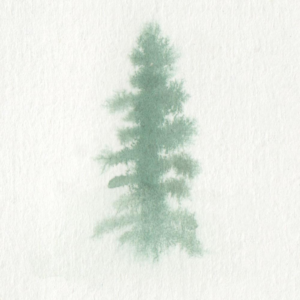 Painting a tree completely in fog