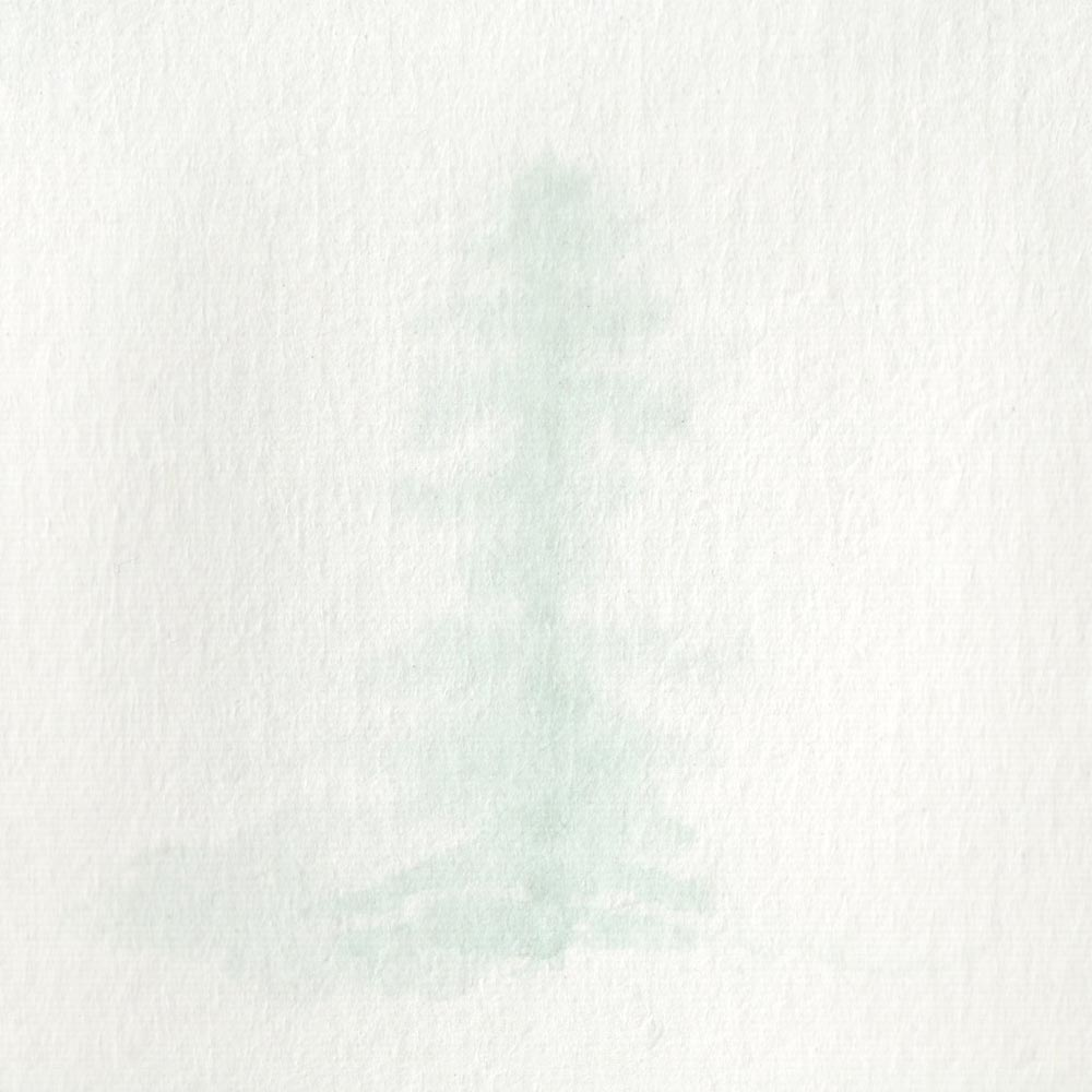 Painting a tree in fog