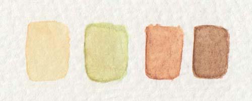 Aquarellfarben für Augenfarbe Haselnuss