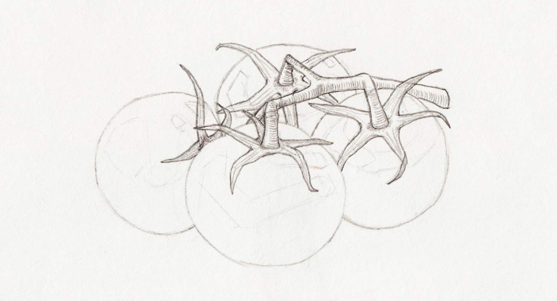 Richtig Skizzen zeichnen lernen